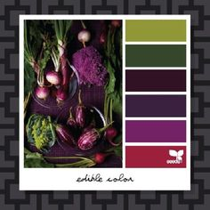 I love this color scheme. Reds and purples together along with a splash of green, like flowers in nature.