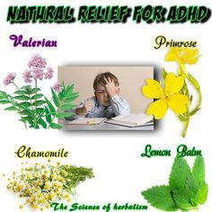 Natural Remedies To Help Kids Focus