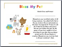24 Best Blessing of the Animals images in 2017 | Certificate
