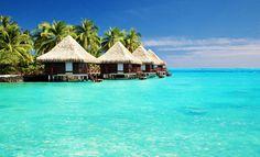 #Reisekracher #Malediven: 9 Tage im Top-Hotel inkl. Vollpension, Zug-zum-Flug, Flügen und Transfer für nur 990€ ► http://www.urlaubsguru.de/pauschalreisen-angebote/reisekracher-malediven-9-tage-im-top-hotel-inkl-vollpension-zug-zum-flug-fluegen-und-transfer-fuer-nur-990e/