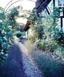 The garden from the Danish renowned Inn Relais & Chateaux Falsled Kro at the island Funen #Denmark