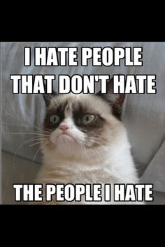Grumpy Cat- but u hate everyone, nd everything. :s