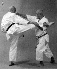 Soto sukui uke, jōdan gyaku zuki, kinteki geri, jōdan haishu uchi Martial Arts, Combat Sport, Martial Art