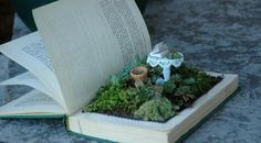Miniature garden in book. This might be good for succulents and other plants not requiring root depth.