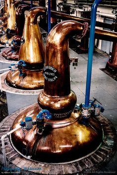 Glenfiddich Pot Stills by Wilson Abernethy on 500px