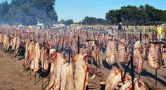 """Argentina, NO further promotion of the consumption of meat by killing 50 more animals, at the """"Roots Festival"""" at Technopolis to be held between 1 and 4 October!"""