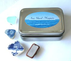 Sea Shard Magnet Boxed Set, $22.00