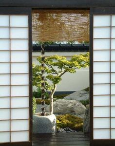 Japanese sliding door with open air garden. Think about cutting out sky light to leave open air japanese style garden