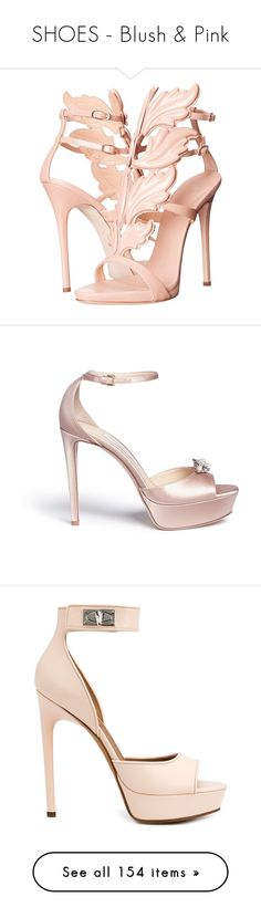 """""""SHOES - Blush & Pink"""" by lynesse ❤ liked on Polyvore featuring shoes, sandals, heels, suede sandals, giuseppe zanotti sandals, open toe heel sandals, open toe sandals, stiletto heel sandals, ankle strap heel sandals and high heels sandals"""