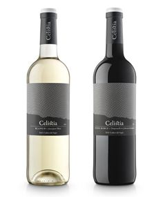 Costers del Sió winery located in Lleida, Spain, Sauvignon Blanc and Cabernet Sauvignon