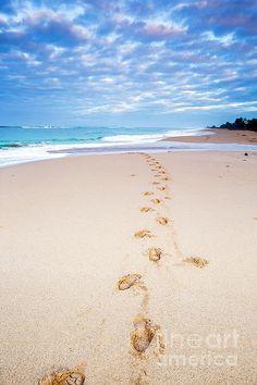 Footprints in the sand by Daryl L Hunter Hawaii Landscape, Kauai, Footprint, Wall Art, Beach, Water, Outdoor, Gripe Water, Outdoors
