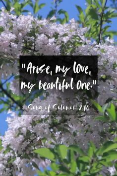 Healing Scriptures, Scripture Verses, Bible Scriptures, Faith Quotes, Bible Quotes, Spiritual Religion, Inspirational Catholic Quotes, Father Daughter Relationship, Emotional Healing
