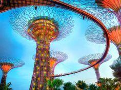 シンガポールの人気スポット!超巨大植物園「ガーデンズ・バイ・ザ・ベイ」がすごい!|トリドリ – 旅行をもっと、身近に。