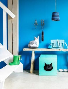 7 Cute Cats Enjoying DIY Projects Their Humans Made For Them