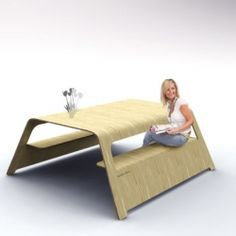 things to do with a 4x8 sheet of plywood @Andrew Van Leeuwen ....make this for me