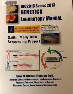 BIO2018 Spring 2013 Genetics Laboratory Manual : Sailfin Molly DNA Sequencing Project / Janine M. LeBlanc-Straceski