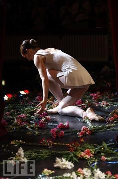 Darcey Bussell leaves the stage - Ballet, балет, Ballett, Bailarina, Ballerina… Ballet Art, Ballet Dancers, Ballet Photos, Strictly Come Dancing, Curtain Call, Ballet Beautiful, Simply Beautiful, Beautiful Images, Royal Ballet