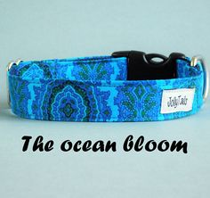 Modern dog collar Turquoise dog collar for puppies Pet apperal