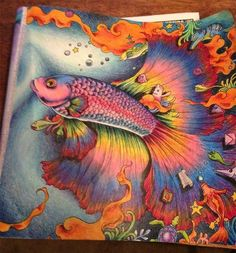 http://Amazon.com: Animorphia: An Extreme Coloring and Search Challenge Very nearly a 5-star coloring book. By badkittym on Dec 10, 2015 Brand new to the world of 'adult coloring' and colored pencils, this was the first book I purchased, along with a set of prismacolors. To make a long story short: WOW! ......