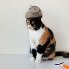 ;) cat hair wig!