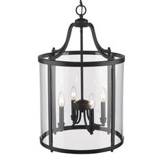 Golden Lighting Payton 4 Light Pendant in Black with Clear Glass