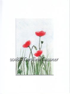 """Poppies #8"" mixed media (watercolour, soft pastels) 2018©Karolina Gassner Soft Pastels, Watercolour, Poppies, Charity, Mixed Media, Collections, Gifts, Painting, Art"