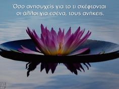 Psygrams Ideas in words Greek Quotes, Life Images, Health Tips, Words, Horse, Healthy Lifestyle Tips
