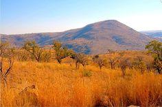 South Africa Landscape | 10 Parks That Best Display South African Landscape, Wildlife