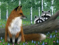 Red Fox Raccoons Limited Edition ACEO Print Art | eBay