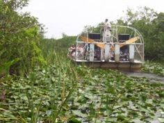 Everglades-Airboat hubby wants to do this