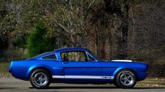 The Nation's Premier Full Color Buy Sell Trade automobile magazine with muscle, classic, and sports cars for sale. Ford Mustang 1964, Ford Mustang Shelby Cobra, Ford Mustang Fastback, Ford Shelby, Mustang Cars, Car Ford, Ford Mustangs, Sports Cars For Sale, Ford Classic Cars
