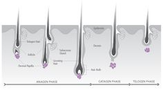 Be Beauty Smart: Razor, wax, cream, laser - Hair removal solutions