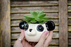 Vaso bichinhos - Panda