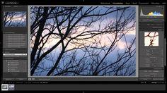 Verschil tussen RAW en JPEG bestand (lightroom 4 tutorial)