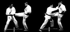 Hiji de uke sukui, shōtei ganmen zuki Martial Arts, Concert, Concerts, Combat Sport, Martial Art