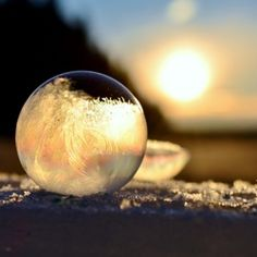 Kelly Images and Photography:  blowing bubbles on a very cold day.  Amazing images on her website!