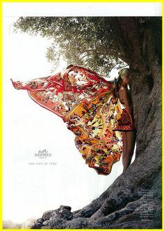 Hermès butterfly =)