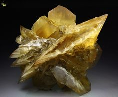Gypsum specimen is big and pristine group of one dominant central crystal of 9,2 cm with flat tabular shape and many intergrown smaller crystals sitting on the sides. The most amazing aspect of this specimen is the color – it is rich and very intense golden-amber color that is much stronger than the most specimens from this famous locality. All crystals are transparent and lustrous, gemmy with sharp edges and perfect crystallization. Complete all around.  Killer Gypsum!