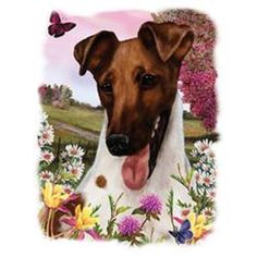 Fox Terrier Dog Floral Dog T SHIRT  Item no. 917e - pinned by pin4etsy.com