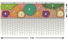 Häuser mit kahlen Fassaden und niedrigen Pflanzen drum herum wirken oft wie Fremdkörper. In unserem Beispiel bildet ein Beet mit Kriechspindel, Johanniskraut und Zwergmispel eine harmonische Einheit mit der Hausmauer. #pflanzplan #beet #hauswand