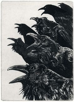 INQUISITION, raven + crow etchings, prints available // Larry Vienneau Jr., Raven Stamps on #etsy