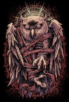 1000 images about a isdom of owls 0v0 on pinterest