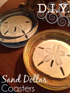 DIY Sand Dollar Seashell Resin Coasters