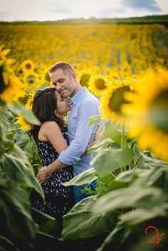 inspiration engagement sunflower | shooting in sunflowers field | Destination wedding photographers | Due Fotografe