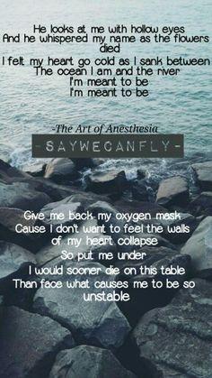 39 Best Saywecanfly Images Music Lyrics Song Lyrics Lyrics