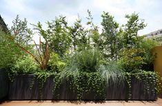 ルーフバルコニーのガーデン。 料理やお茶などの暮らしに利用できるハーブガーデン。 目隠しも兼ねているので常緑樹をメインにメンテナンスの楽な植物達をセレクトしています。 プランターは特注色で塗装し和のカラー3色でコーディネートしました。