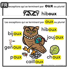 "Exceptions ""oux"" in the plural - French Language Lessons, French Language Learning, French Lessons, French Flashcards, French Worksheets, French Teaching Resources, Teaching French, French Education, French Grammar"