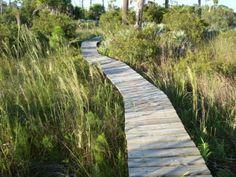 Gag Water Trail.JPG (500×375)