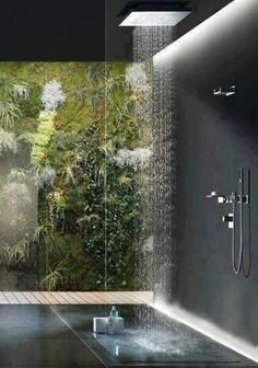 Indoor shower with glass wall to view garden / plant wall