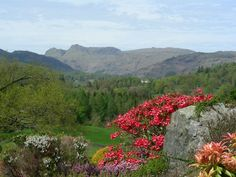 Heart of the Lakes has over 300 Lake District Cottages, luxury cottages in the Lake District, Cottages, apartments and lodges for all requirements, in all Lake District Locations Lake District Cottages, Lodges, River, Mountains, Nature, Outdoor, Outdoors, Cabins, Naturaleza